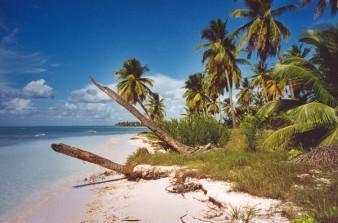 Isla Saona, Dominican Republic