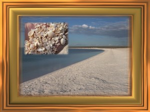 Shell Beach, Shark Bay, Western Australia